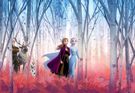 Disney Frozen 2 wallpaper mural